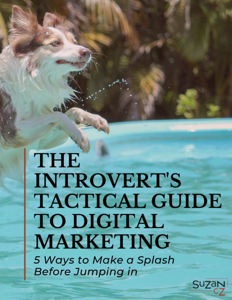Introvert's Tactical Guide Cover 765x990