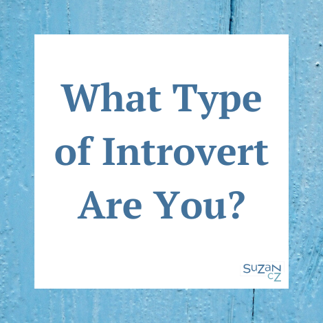 What type of introvert are you?